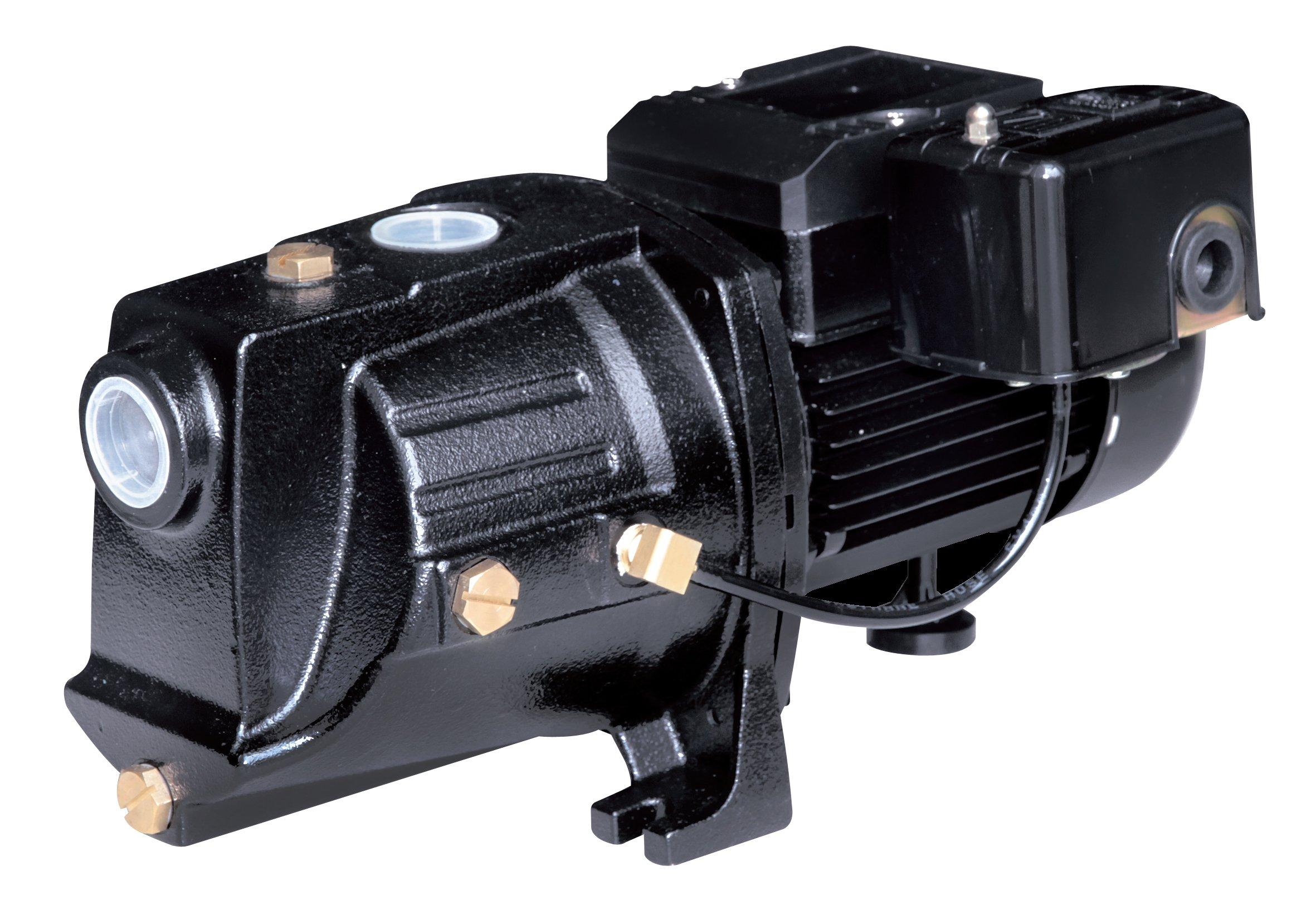 Acquaer SJC075 3/4 HP Dual-Voltage Cast Iron Shallow Well Jet Pump, Black by Acquaer
