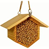 "Beecome Mason Bee House - Premium Beehive - Professional Garden Supplies - Garden Gifts for Plant Lovers - 10.7""x8.7""x6.3"" -"