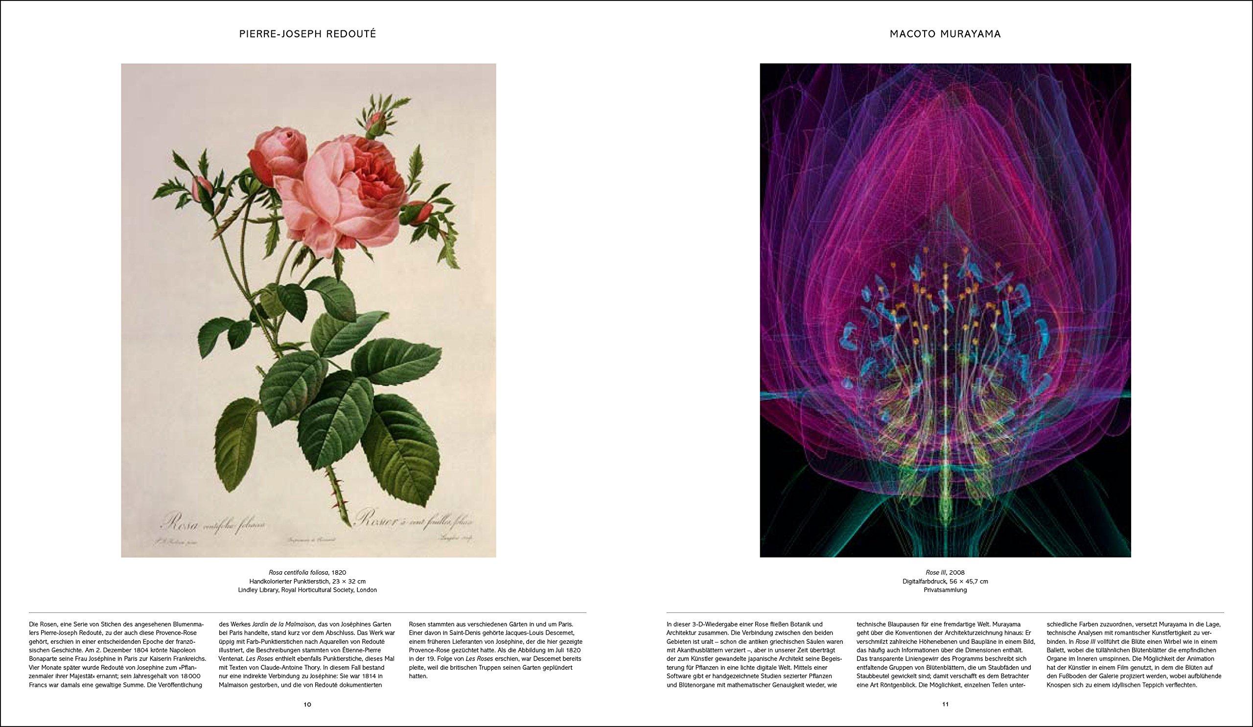 Flora: 3000 Jahre Pflanzendarstellung in der Kunst: Amazon.de ...