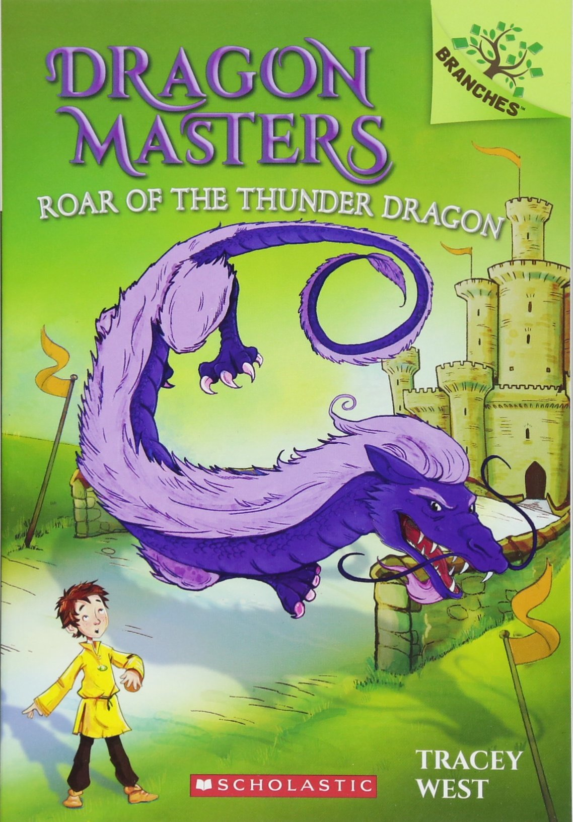 dragon masters series books
