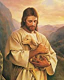JESUS Carrying Lamb / Christian - Christianity 8 x 10 GLOSSY Photo Picture