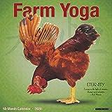 Cow Yoga 2018 Calendar: Willow Creek Press: 0709786040667 ...