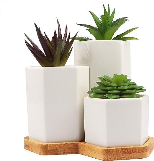 BELLE VOUS Macetas de Ceramica (Set de 3) - Blancas Forma Hexagonal Mini Jardín Flores con Agujero Drenaje et Bandeja Bambú - Maceta Suculentas Pequeñas para Decoración Oficina, Escritorio, Mesa: Amazon.es: Jardín