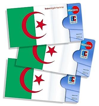 Cardbox Algerien 3 Stück Schutzhüllen Für Ec Karten Kreditkarten Versichertenkarten Kundenkarten Visitenkarten