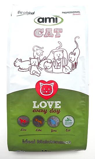 The Vegan Cat-Lover 2
