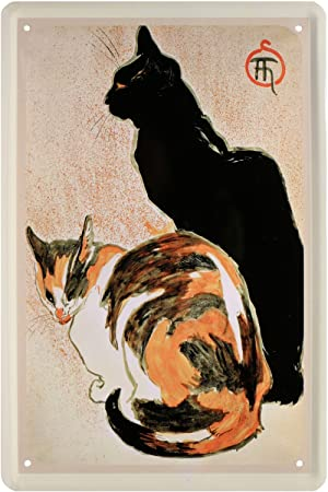 Gatos Cats Cat gatito gato Cartel de chapa 20 x 30 Retro Chapa 1807: Amazon.es: Hogar
