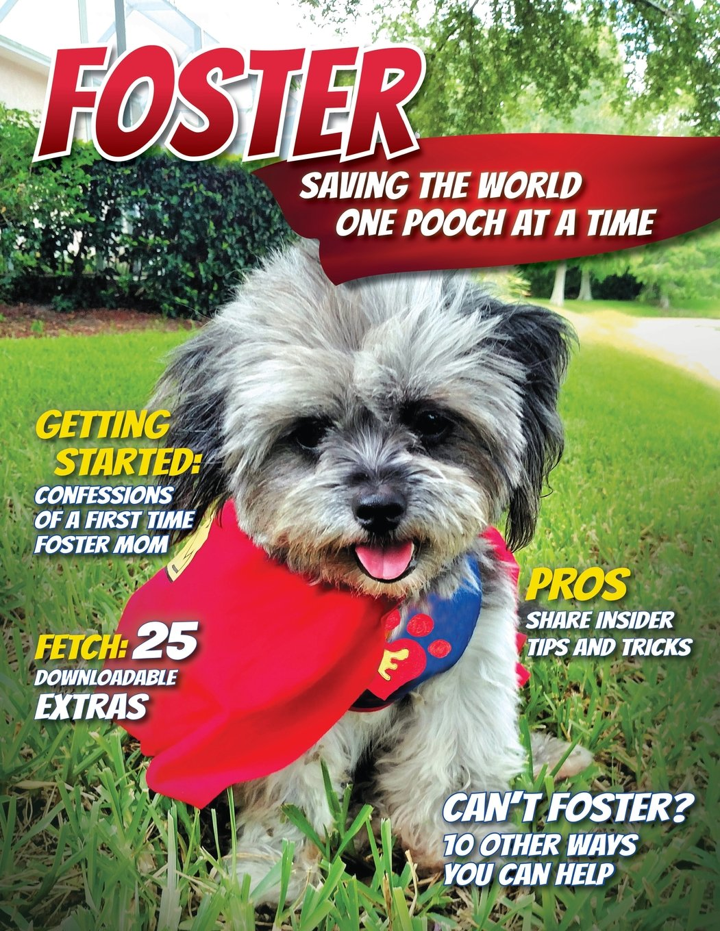Download Foster: Saving the World One Pooch at a Time or 10 Other Ways You Can Help! pdf
