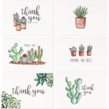 blank watercolor thank you cards 36 assorted boxed pack succulent floral green black white card designs bulk note box for graduation wedding