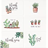 Blank Watercolor Thank You Cards: 36 Assorted Boxed Pack - Succulent Floral Green & Black & White Card Designs: Bulk Note Box for Graduation, Wedding, Bridal Party, Baby Shower, Men & Women Sympathy