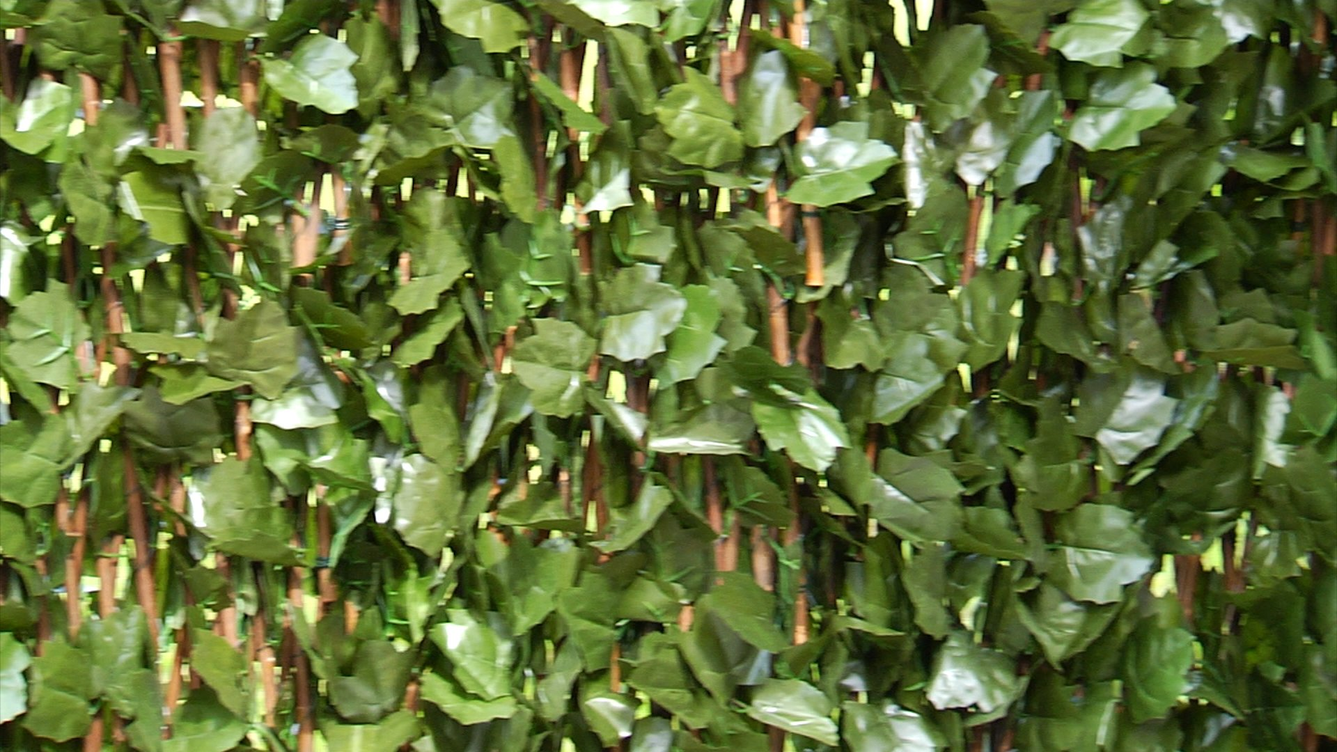 Ivy Hedge Expandable Fence 2 pak