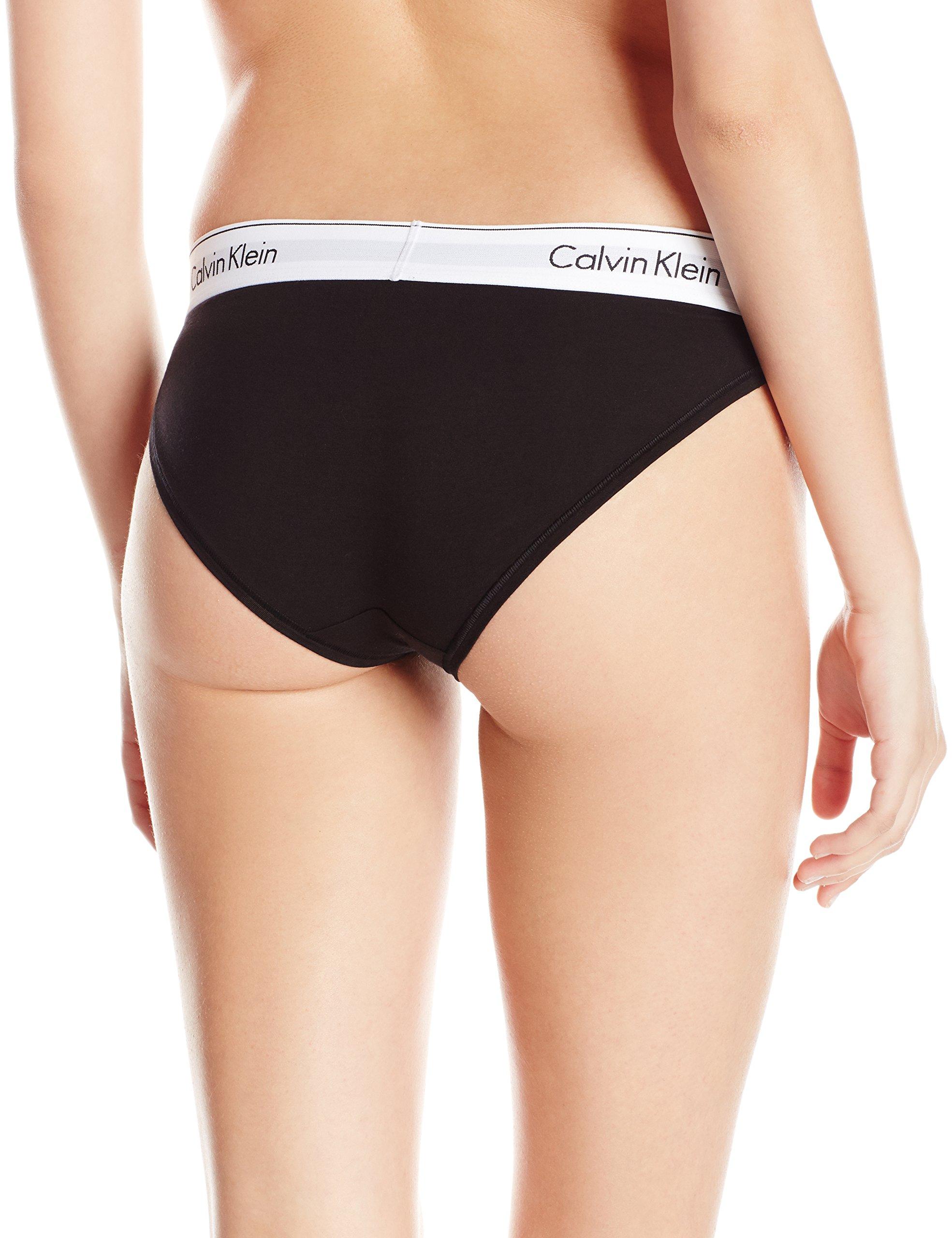 Galleon Calvin Klein Women S Modern Cotton Bikini Panty