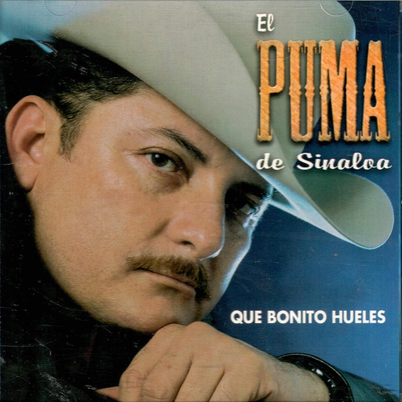 Pulido cápsula Menos  El Puma De Sinaloa Que Bonito Hueles (Audio Cd 2003) - El Puma De Sinaloa  Que Bonito Hueles (Audio Cd 2003) - Amazon.com Music