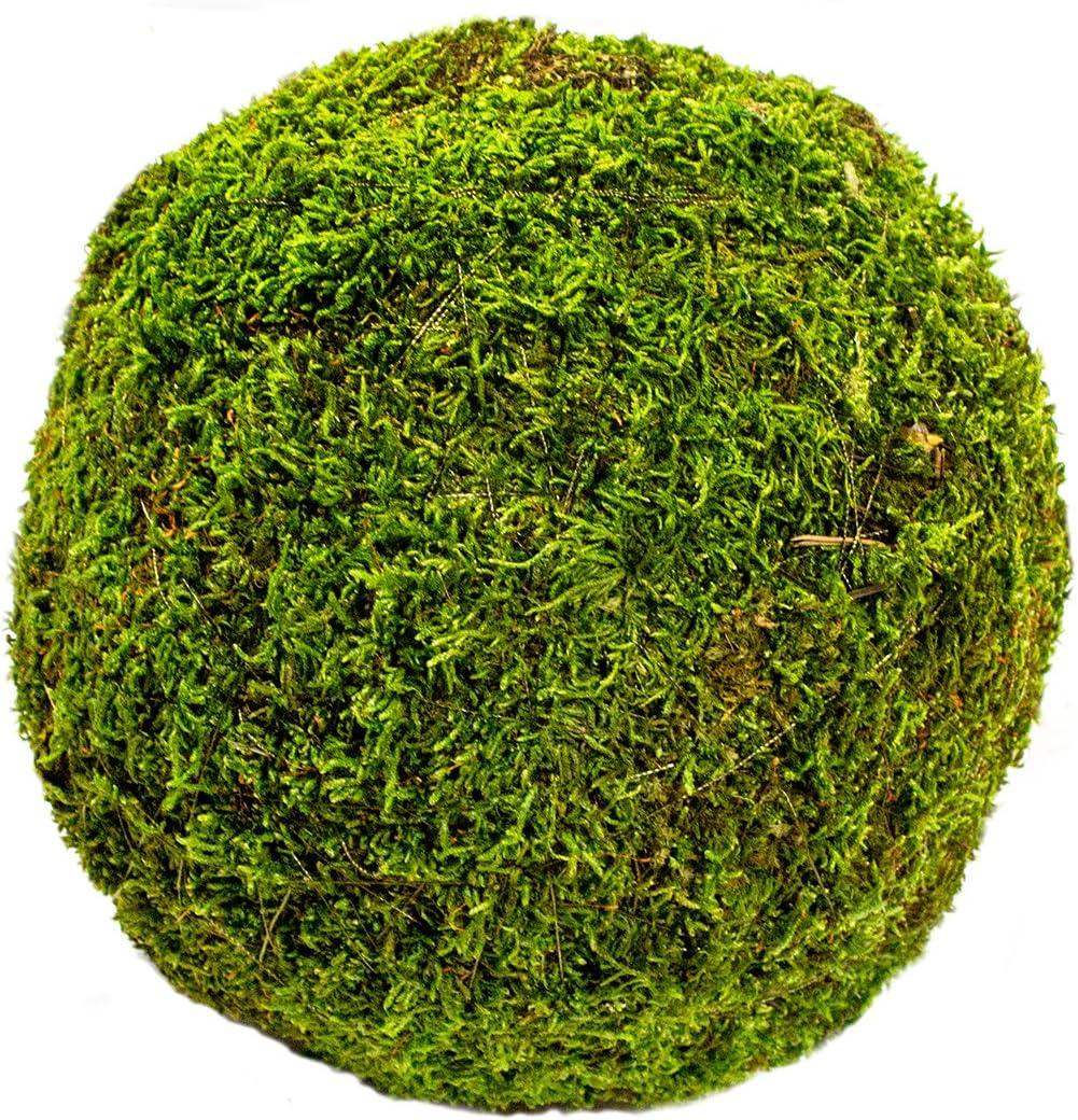 Fresh Green 2 21769 9 pack SuperMoss Moss Balls