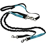 Roxy's Pet Supply Double Dual Dog Leash 6ft - Medium to Large Dogs - No Tangle - Luminous Reflective Stitching - Comfortable Grip - Lightweight & Padded Handles | Black and Blue
