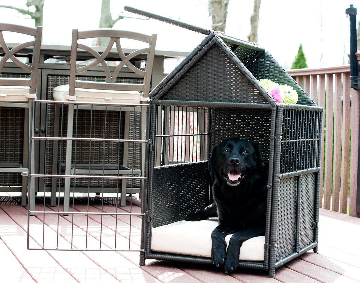 Iconic Pet - rattan Pet Crate with Storage, Brown/Sand by Iconic Pet (Image #4)