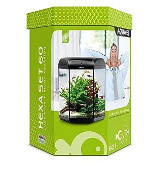 Aquael Hexa Set Acuario para acuariofilia 20 L: Amazon.es: Productos para mascotas