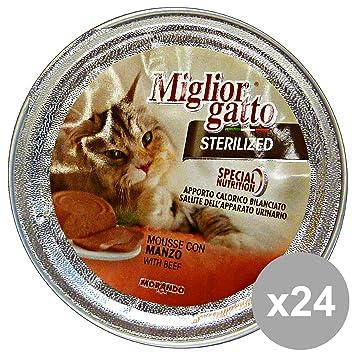 MIGLIOR GATTO Set 24 Gr. De Alimentos Esterilizados 85 Mousse De Carne De Vaca Del Gato: Amazon.es: Productos para mascotas
