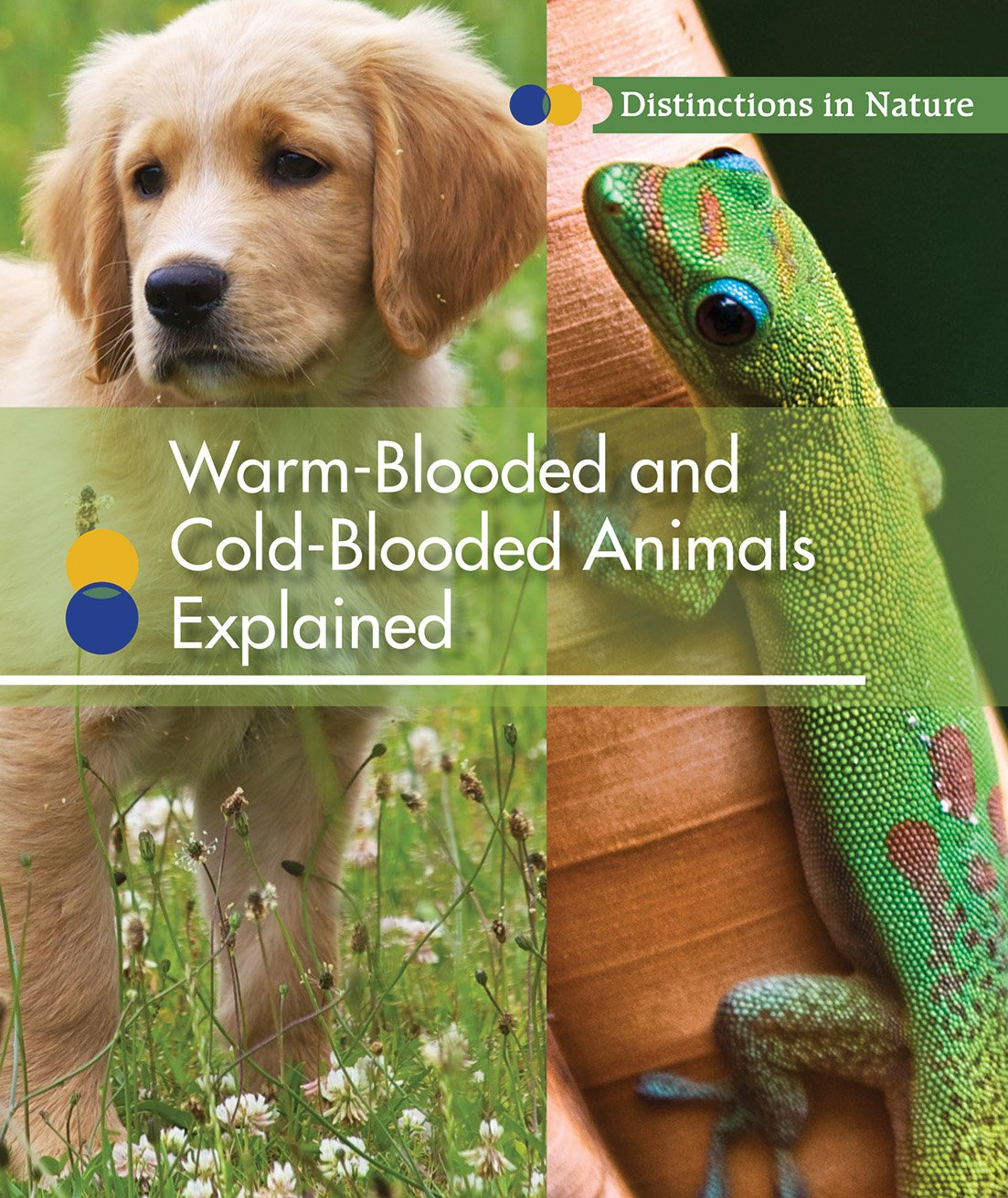 Warm-Blooded and Cold-Blooded Animals Explained: 6 Distinctions in Nature:  Amazon.co.uk: Klepeis, Alicia: Books