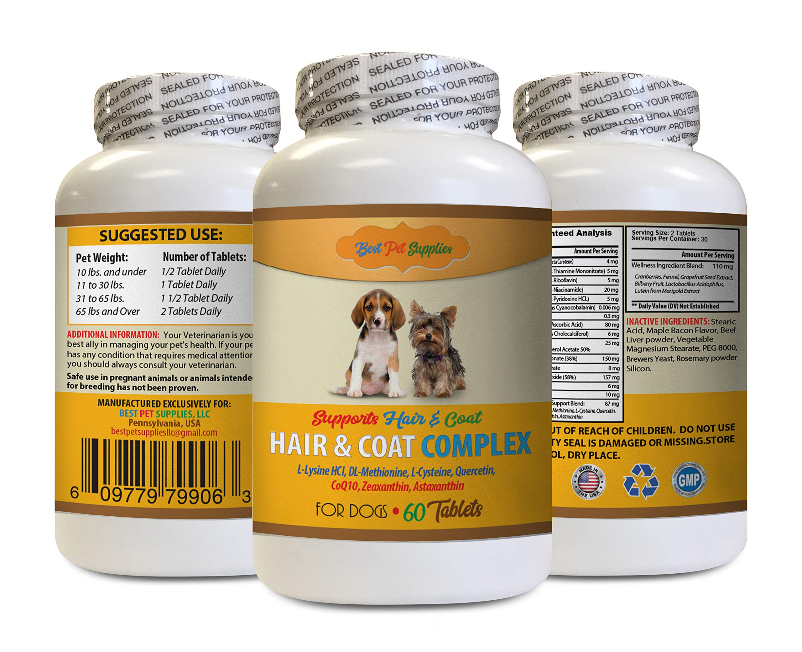 BEST PET SUPPLIES LLC Immune Booster for Dogs - Hair and Coat Complex for Dogs - Full Skin and Hair Health - Immune Boost - Dog Minerals - 60 Tablets (1 Bottle) by BEST PET SUPPLIES LLC
