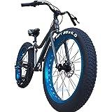 TRINX(トリンクス) ビーチクルーザー 【ファットバイク】迫力の極太タイヤ Wディスクブレーキ 軽量アルミフレーム Shimano7段変速 26インチ26x4.1 スノーバイク FATBIKE T106 26インチ