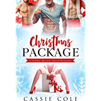 Christmas Package: A Holiday Reverse Harem Romance (English Edition)