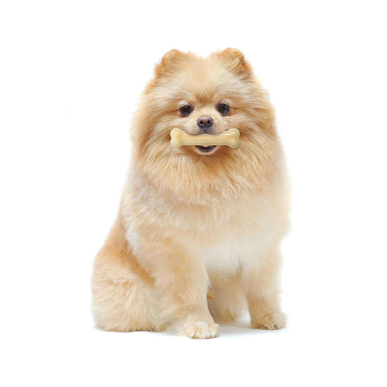 Nylabone Dura Chew - Extra pequeño, original, talla XS: Amazon.es: Productos para mascotas