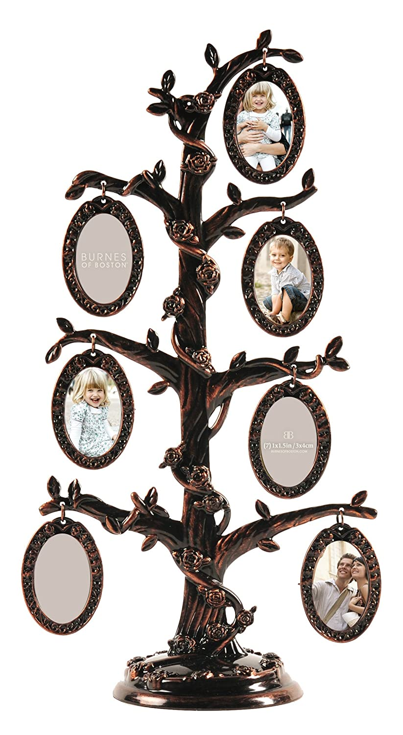 Buy Burnes of Boston 7-Opening Family Tree Collage Frame by Burnes ...