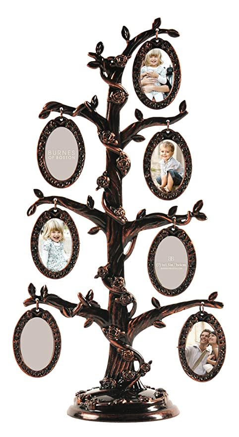 Amazon.com - Burnes of Boston 7-Opening Family Tree Collage Frame -