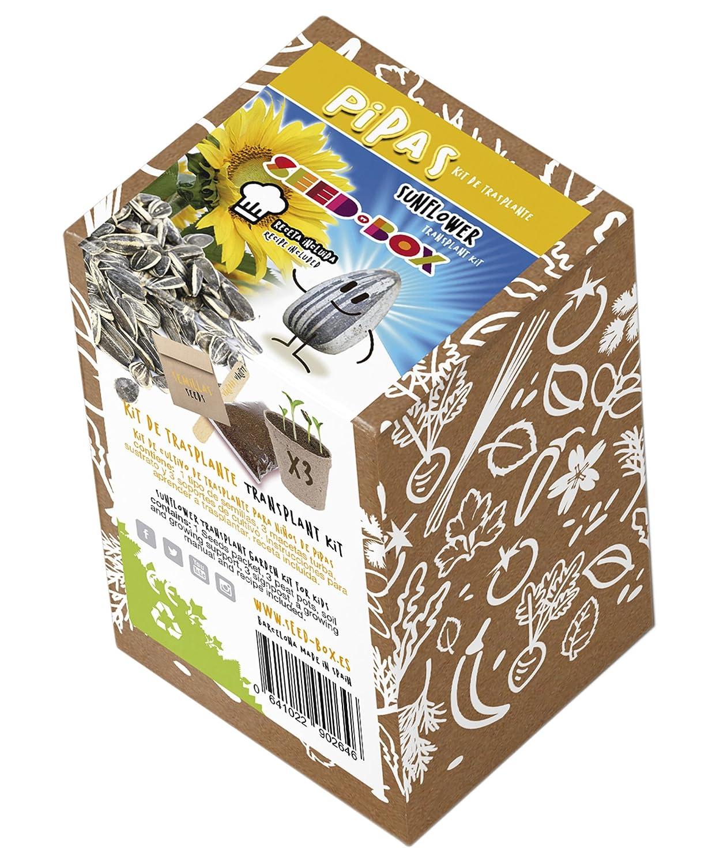 SeedBox KTEVHBL Huerto Urbano Kit trasplante Eco de Berenjena Larga Morada, 0.7x0.7x9 cm