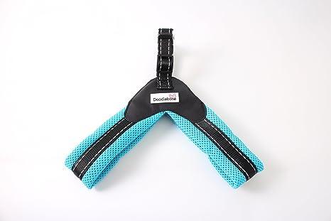 Doodlebone Boomerang - Arnés para perro (4 tamaños), color cian ...