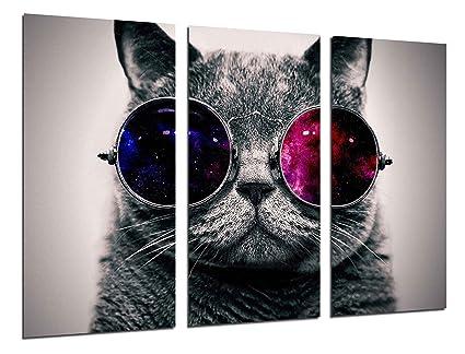 Cuadros Camara Poster Moderno Fotografico Gato Lennon, Gafas Vintage, 97 x 62 cm,