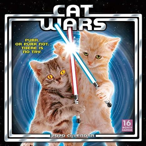 Cat Wars 2020 Calendar: Sellers Publishing Inc ...