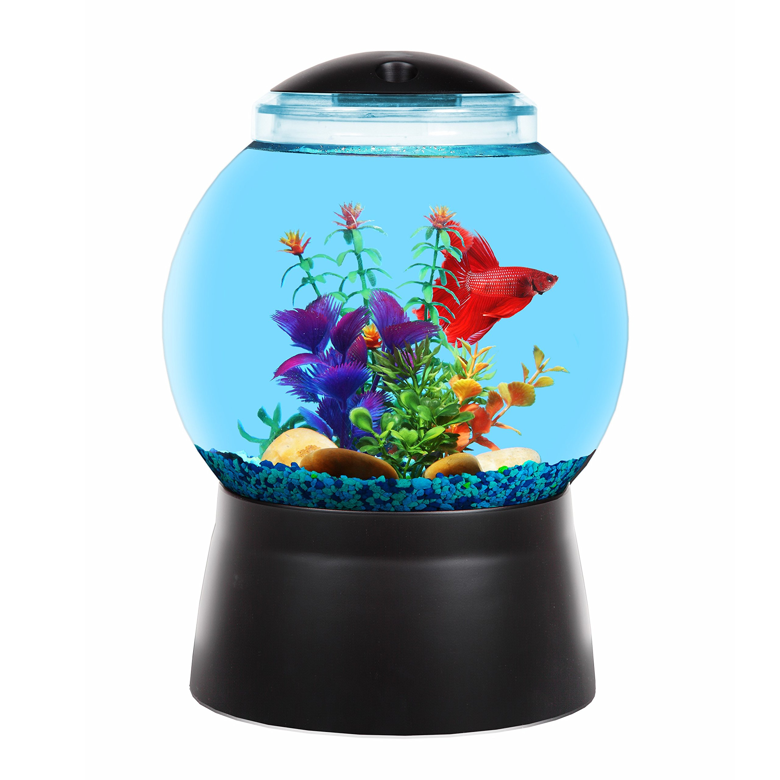 BettaTank 2-Gallon Gumball Fish Tank with LED Lighting by Koller Products