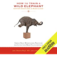 How to Train a Wild Elephant & Other Adventures in Mindfulness: Simple Daily Mindfulness Practices for Living Life More Fully & Joyfully
