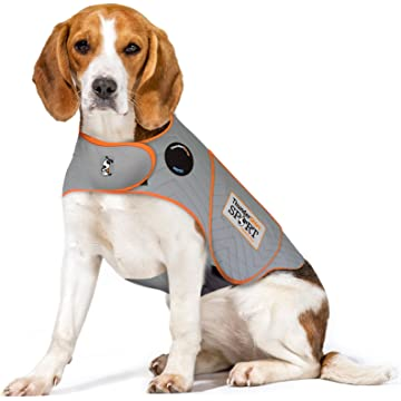 reliable Thunder Shirt Sport