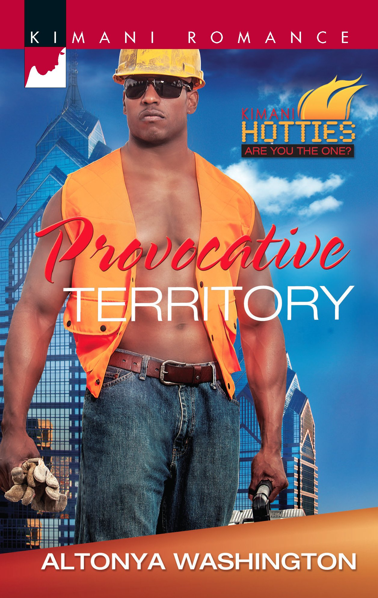 Download Provocative Territory (Kimani Hotties) pdf epub