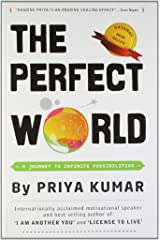 The Perfect World: A Journey To Infinite Possibilities Paperback
