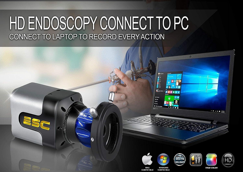 Buy ESC Endoscope Camera Rigid Endoscopy ENT Medical Full HD