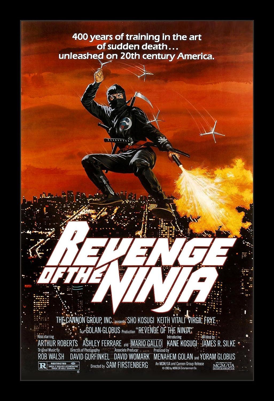 Amazon.com: Revenge Of The Ninja - 11x17 Framed Movie Poster ...