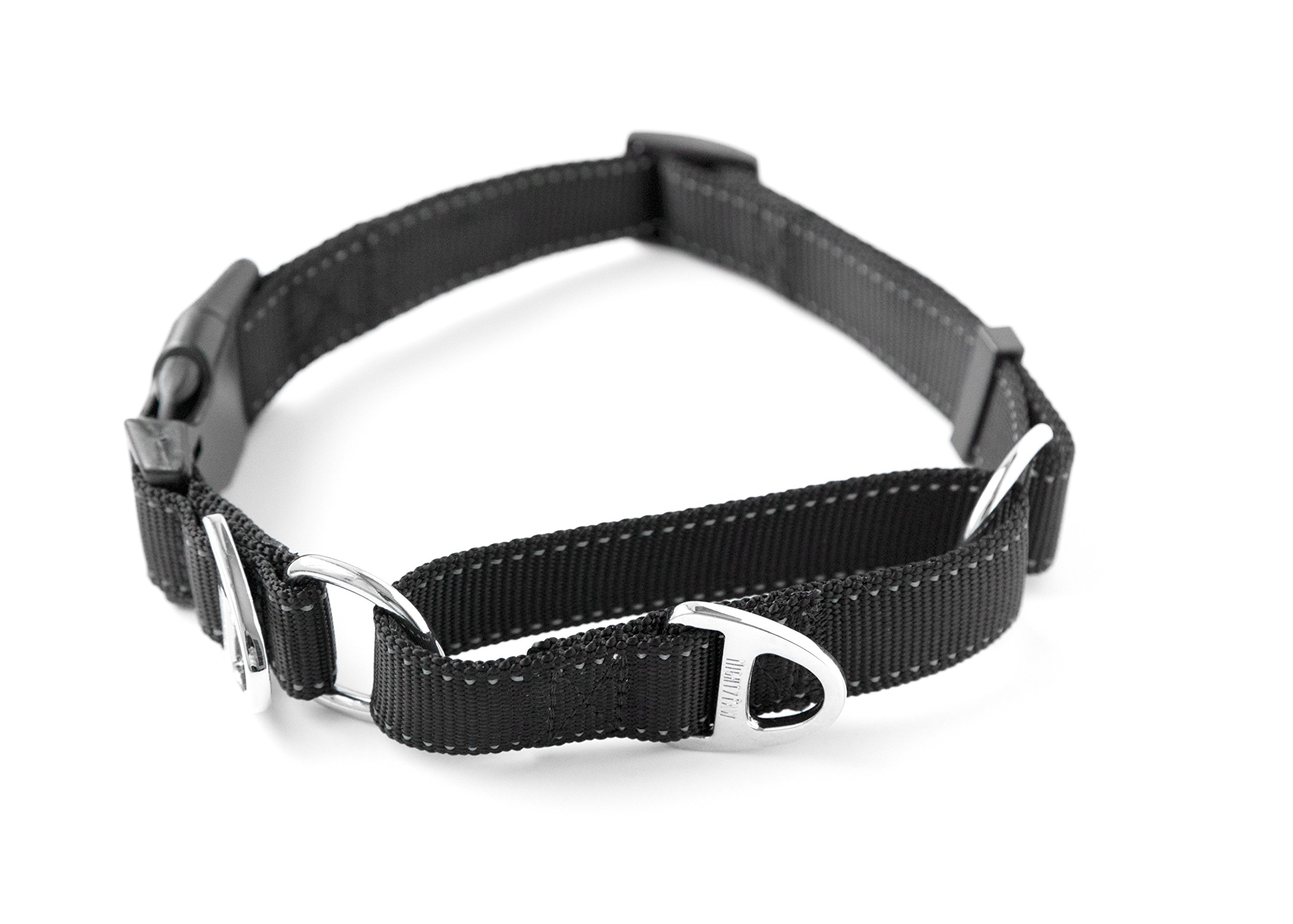 Mighty Paw Nylon Training Collar, Nylon Martingale Collar, Premium Quality Limited-Cinch Collar with Reflective Stitching