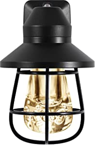 GE 38628 LED Vintage Night Light Sensing, Auto on/Off, 2200K Warm White, Designer Look with Bronze Finish, Farmhouse, Ideal for Home Office, Entryway, Kitchen, Bathroom Cage