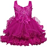 Wish Karo Baby Girls Party Wear Frock Birthday Dress for Girls - Net - (fre149)