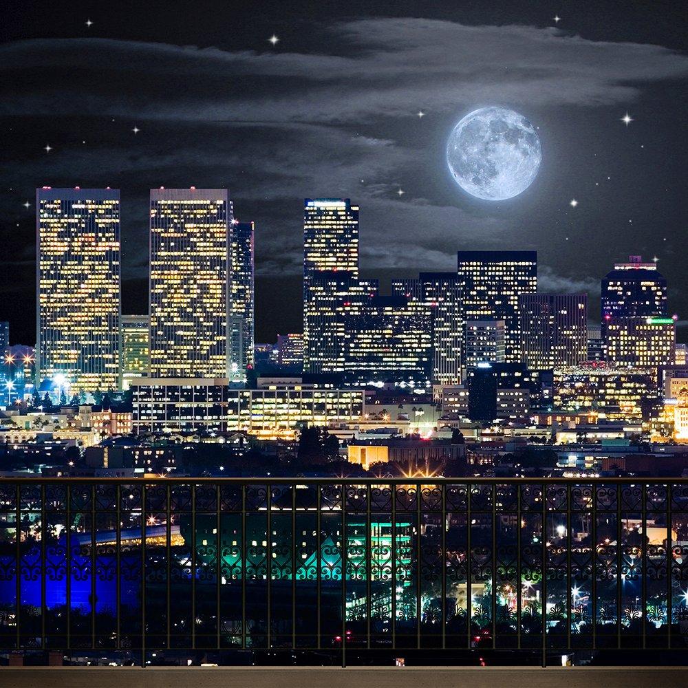 写真バックドロップ – Los Angeles Moonlight – 10 x 10 ft。 – 高品質シームレスなファブリック   B00OJR1FP4