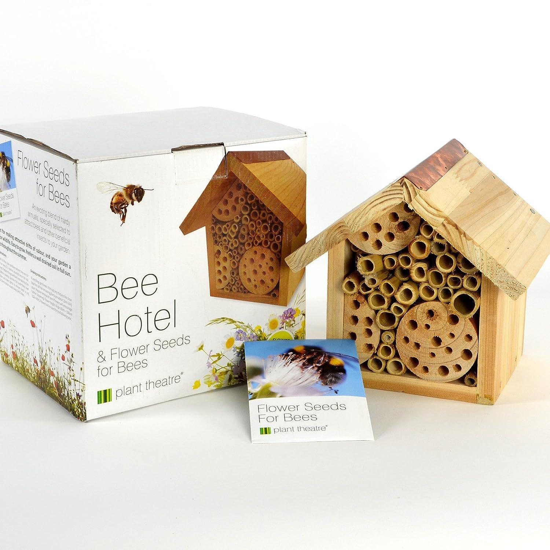 Plant Theatre Hôtel pour abeilles et graines de fleurs pour abeilles–Boîte Cadeau–Graines inclus, Excellent Cadeau de fête des mères
