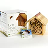 Plant Theatre Bee Hotel & Flower Seeds for Bees - Gift Boxed - Seeds Included, Great Mothers Day Gift