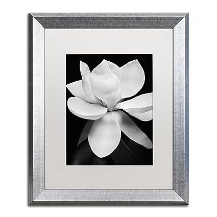 Amazon.com: Magnolia by Michael Harrison, White Matte, Silver Frame ...