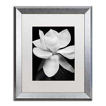 Amazoncom Magnolia By Michael Harrison White Matte Silver Frame