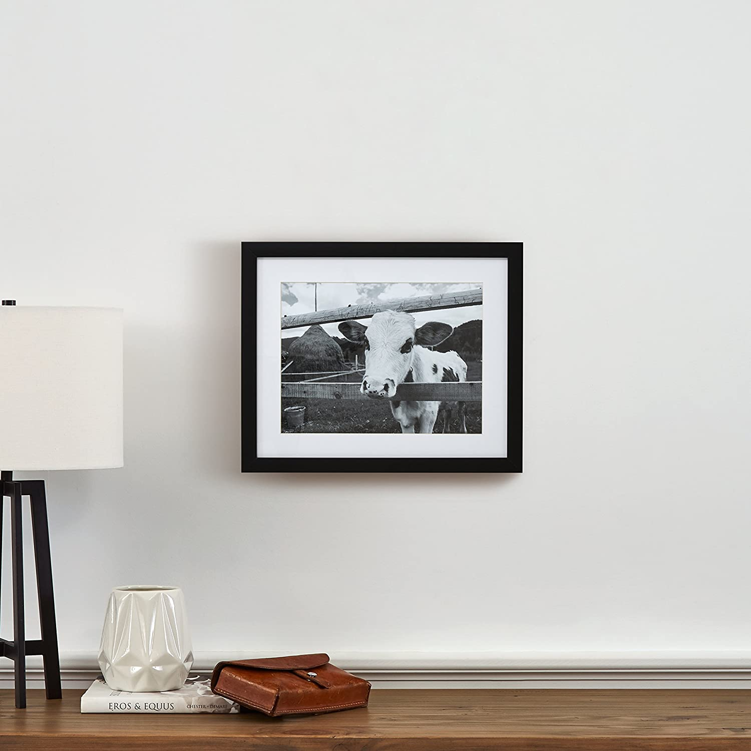 Amazoncom Black And White Curious Cow Photo Black Frame 18 X 22