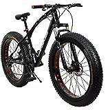Fat Tyre (Fat Boy) Adventure Sports MTB Cycle with 21 Derailleurs (Gears)