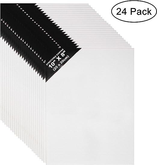 Lienzos (24 Piezas) - L25 x W20cm Set Lienzos para Arte - 3mm de ...